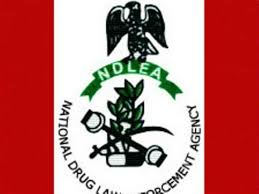 Ndlea Recruitment Form
