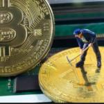 Download Bitcoin Wallet App