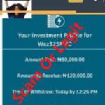 Wazobia Cash Investment