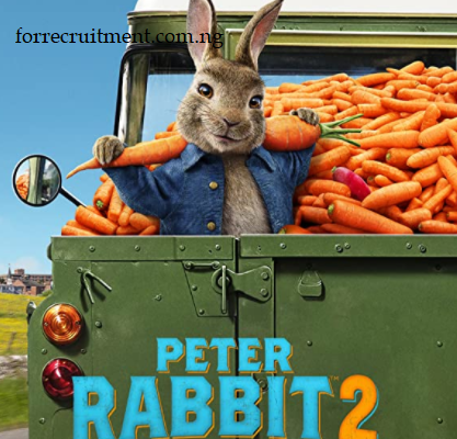 Peter Rabbit 2: The Runaway Full Movie Download